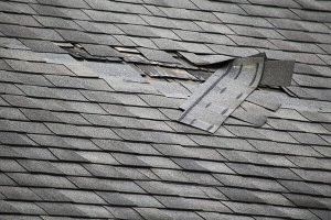 Roof Shingle Damage